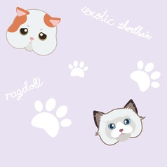 Seamless cute cat and paw purple pattern vector