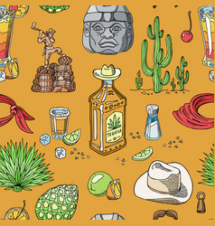 Tequila shot mexican alcohol in bottle vector