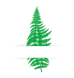 card with green fern vector image