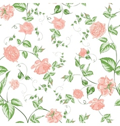 Seamless texture of beautiful roses for textiles vector image