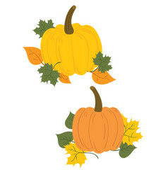 a set pumpkins in fallen leaves collection vector image