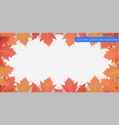 autumn leaves frame on transparent background vector image