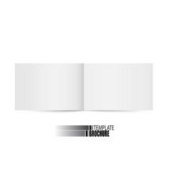 brochure template on white background vector image