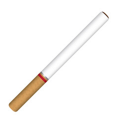 cigarette on a white background vector image