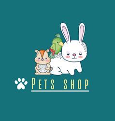 cute pet shop cartoon vector image