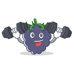 fitness blackberry character cartoon style vector image
