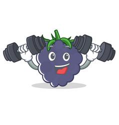 Fitness blackberry character cartoon style vector