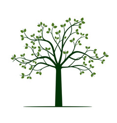 Green spring tree vector