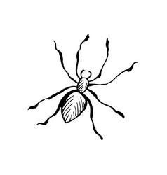 Halloween spider doodle element isolated vector