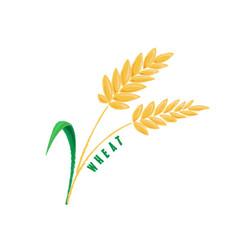 Logo icon design maize corn farm vector