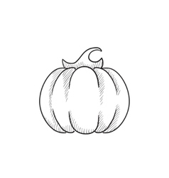 Pumpkin sketch icon vector image