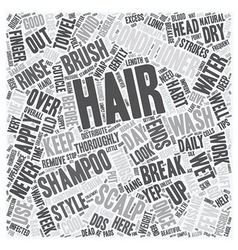 Simple Tips For Beautiful Hair text background vector image