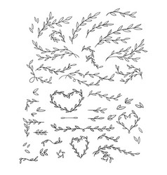 gentle of hand drawn branches vector image vector image
