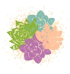 with succulents vector image vector image