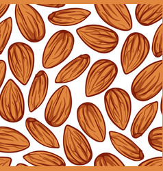 almond seamless pattern brown nuts on white vector image