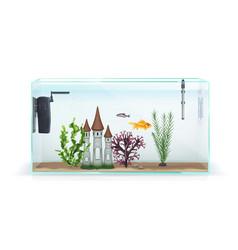 Aquarium realistic composition vector