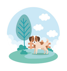 cute dog in park vector image