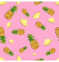 Fruits pineapple seamless patterns vector image vector image