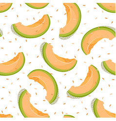 melon slice seamless pattern on white background vector image