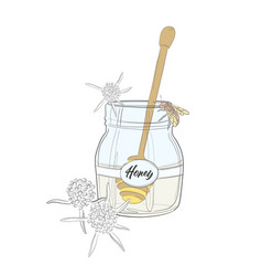 nature cartoon honey and bee big jar vector image