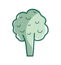 silhouette health broccoli vegetable icon vector image