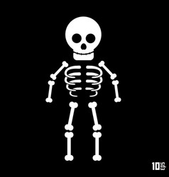 Skeleton on a black background vector