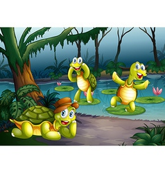 Turtles and pond vector image