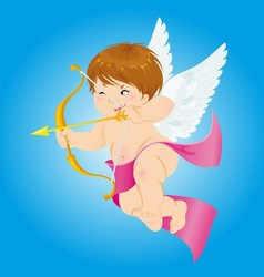 Cupid Love of the Cupid vector image
