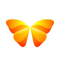 Shiny Butterfly vector image vector image