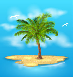 tropical island with palm tree outdoor vacation vector image
