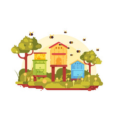 Apiary with bees vector