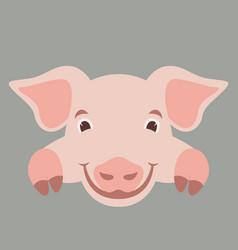 cartoon face pig flat vector image