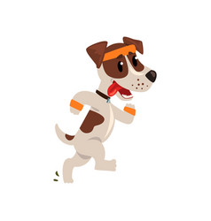 Cute jack russell terrier athlete running putting vector