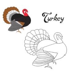Educational game coloring book turkey bird vector