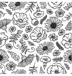 flower sketch monochrome seamless pattern vector image