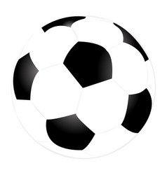 football ball flat design on a white background vector image