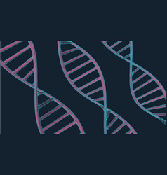 Grey dna with polygon line on blue background vector