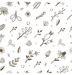 Herbal and floral doodle seamless pattern vector