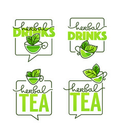 herbal drinks line art logo with handrawn vector image