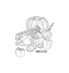Organic Vegetables Still Life Hand Drawn Realistic vector image