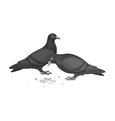 pigeonold age single icon in monochrome style vector image