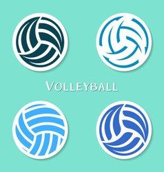 Volleyball ball labels vector image