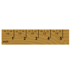 wooden inch ruler vector image