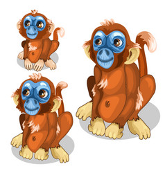 brown funny monkey with blue face isolated vector image vector image