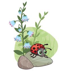Cartoon corner design with ladybug and flowers vector