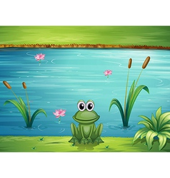 A river and a frog vector image vector image