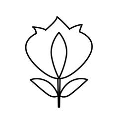 fleur de lys isolated icon vector image