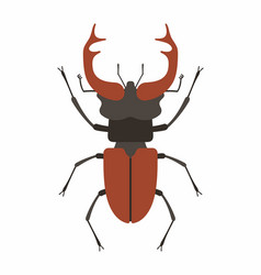 Beetle deer vector