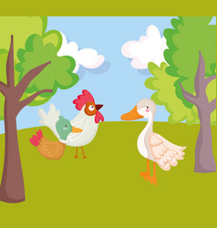 birds rooster duck goose trees grass farm animal vector image