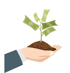 Hand holding a dirt with money tree vector